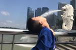 【睿丁英语】新加坡暑期游学营精彩回顾-玩乐篇