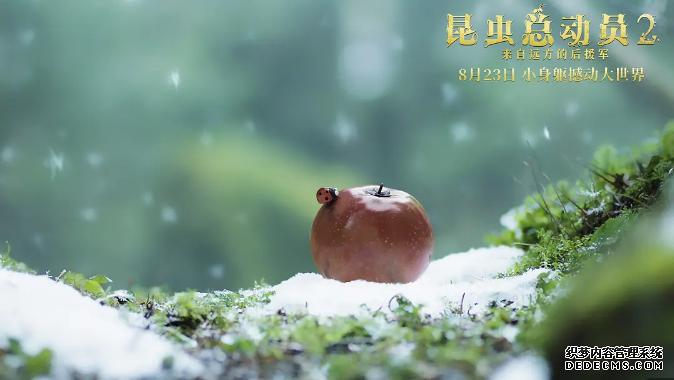 萌动夏日,睿丁携手法国儿童电影《昆虫总动员2》送票啦!