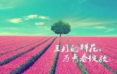 【青春·绽放】热烈庆祝睿丁英语第36期教师岗位认证培训圆满结束。